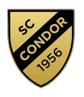 Padel Hamburg Condor